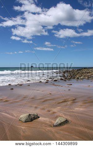 Beach In Waikato