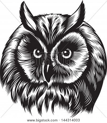 Owl bird head, black and white style