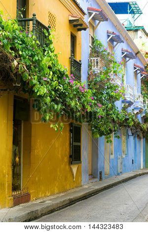 Colorful colonial architecture covered if lush beautiful flowers in Cartagena Colombia