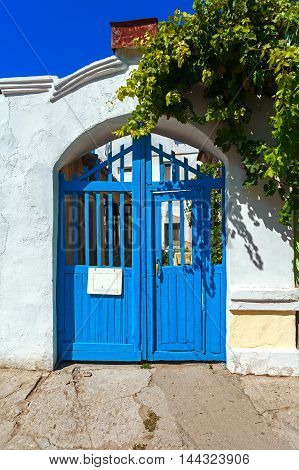Blue wooden door in white wall with the grape tree.