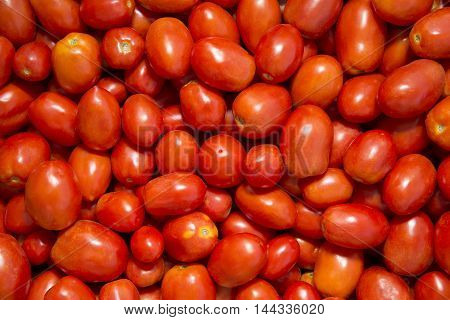 photo of very fresh tomatoes.  Stock Photo