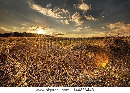 Sunset in the field. Nice lens flare effect. Moravian landscape Drvalovice.
