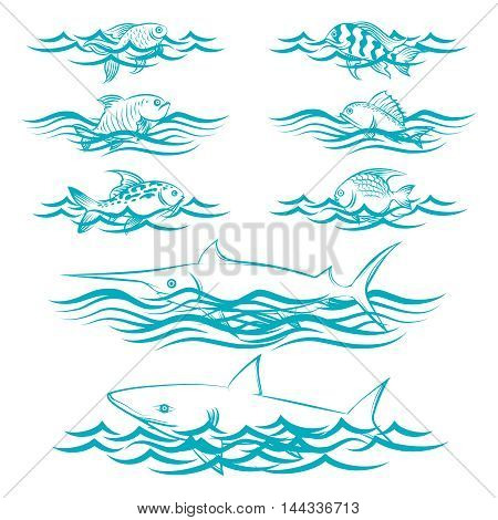 Hand drawn fish in the waves isolated on white background. Vector illustration