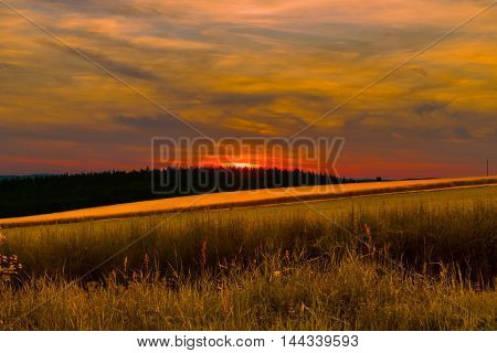 Beautiful magical sunset. On the horizon of the forest and fields and grasses in the foreground.