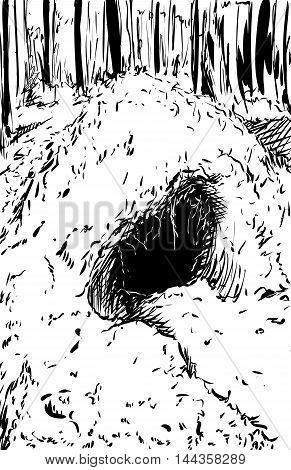 Outlined Bear Den In Forest