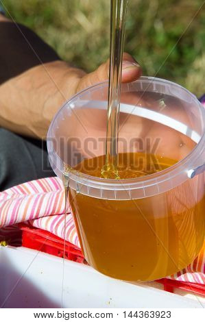 Honey poured beekeeper for packages. a sweet sticky yellowish-brown fluid made by bees and other insects from nectar collected from flowers.