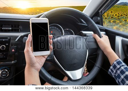 Young woman driver using touch screen smartphone and hand holding steering wheel in a car with sunflower field at sunset background
