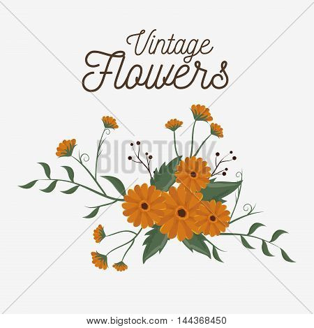 vintage flowers decoration icon vector illustration icon
