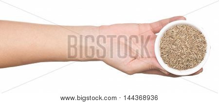 hand with cumin isolated on white background