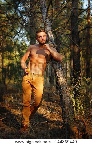 Lumberjack holding an apple. Woodcutter with a naked torso and ax in his hands. Felling trees. Logging. Manual labor.