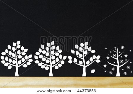 Four trees in white in the four seasons on black blackboard with wooden shelf.