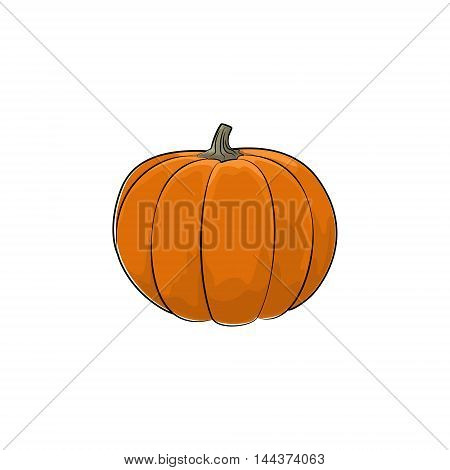 Pumpkin Standing Isolated on White Background, Orange Vegetables Gourd, Edible Fruit ,Vector Illustration