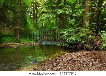 Calm river stream Bela in the valley Pilske udoli. Moravian landscape.