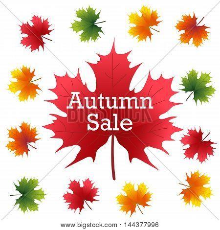 Autumn Sale on maple leaf vector illustration