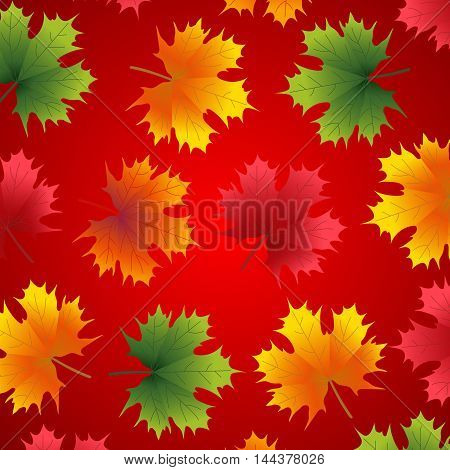 Beautiful autumn background with maple leaves on red