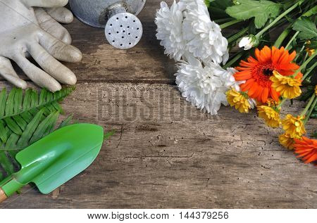 pretty flowers with gardening accessories on wooden background