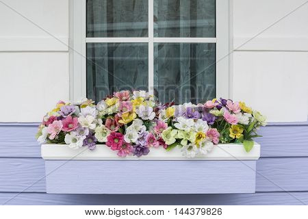 The decorative flowers by the window. Beautiful panicle