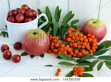 Gifts of autumn: apples cherry plum mountain ash on a white background. Still life in yellow orange red.