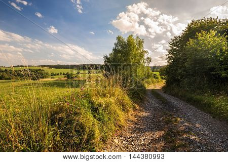 Dirt road and meadow. Moravian landscape Makov.
