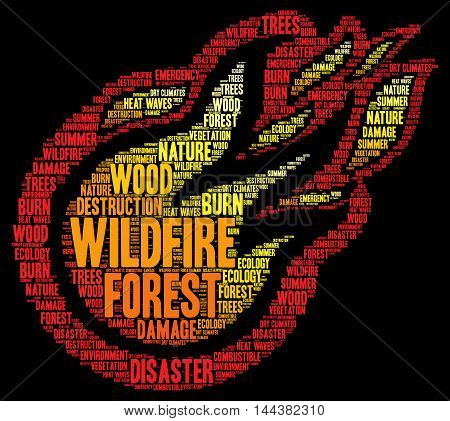 Wildfire word cloud concept with a black background