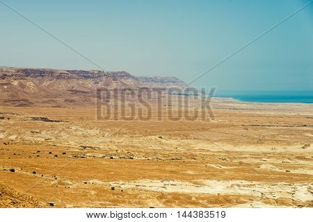 beautiful and diverse coral reef of the red sea with fish