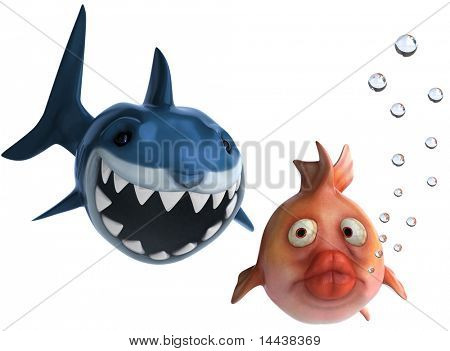 Shark and fish