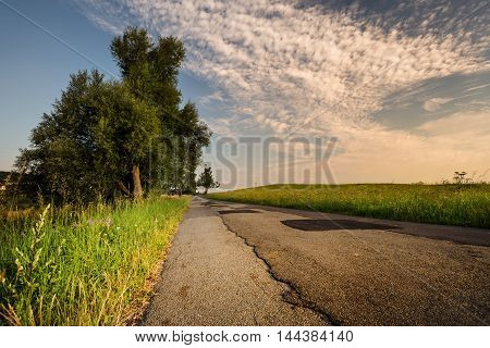 Sunrise road lined with grass and trees. Beautifully lit clouds. Moravian landscape Makov.