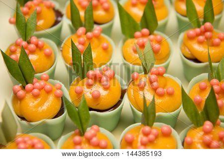 Luxury chocolate pralines decorated on white dish