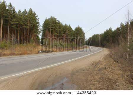 Road over the fild in the winter countryside
