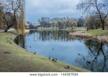 Pond in Moczydlo Park in Warsaw city in Poland