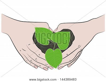 young plant cover their hands on a white background. vector illustration