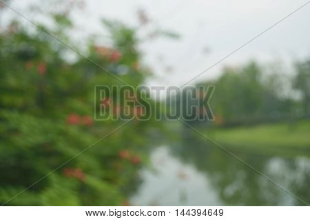 Blur of red flower and tree in public park for background
