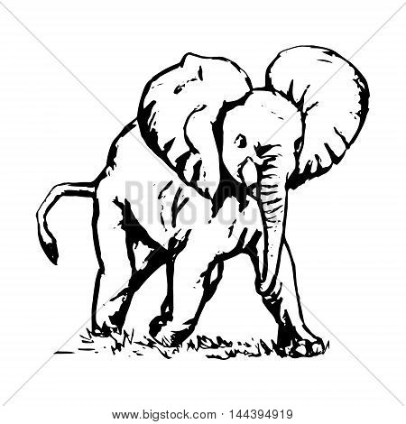 Graphic image of a running elephant vector illustration on white background