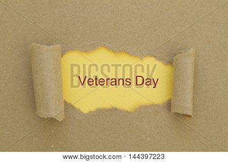 Veterans Day written under torn paper .