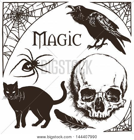 Halloween Cobweb Frame, Black Widow Spider, Black Cat, Raven And Skull Vector
