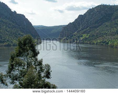 Beautiful detail of the riverside (Vila Velha de Ródão- Portugal)