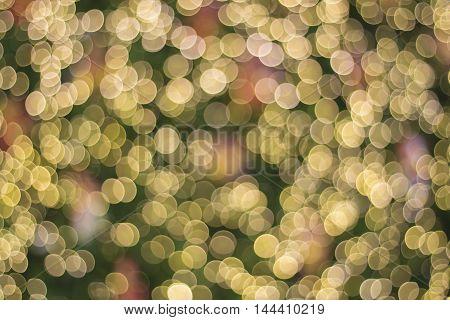 Bokeh night lights of the Christmas tree's coming.