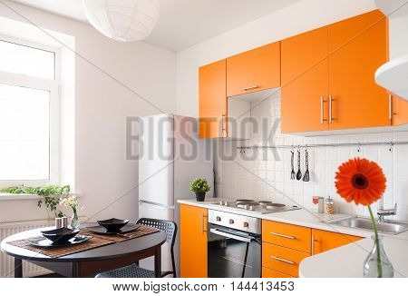 Contemporary kitchen with the orange furniture and flower