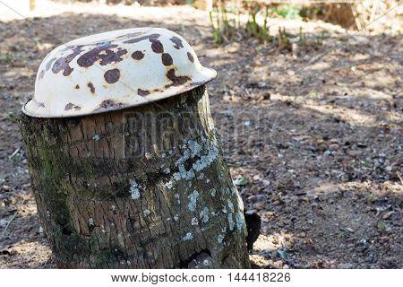 Bacia de ágata virada sobre tronco pode ser usada para campanha contra a dengue