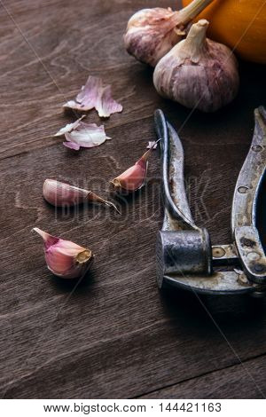 Garlic background. Fresh garlic and garlic press. On dark brown rustic background.