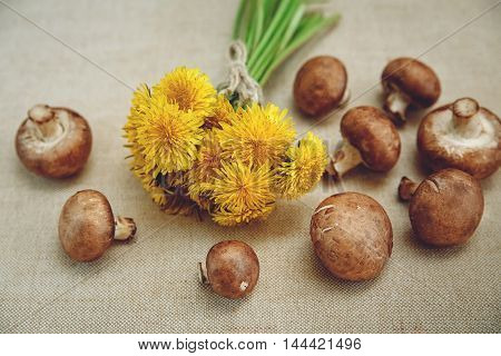 Bouquet of Yellow Dandelions,Fresh Mushrooms on the Linen Texture Tablecloth.Autumn Garden's Background.Wish Card.Selective Focus