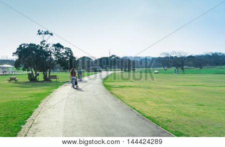 Fukuoka Big Japanese nature Park walking track