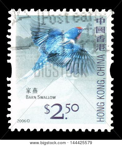 CHINA - CIRCA 2006 : Cancelled postage stamp printed by China that shows Barn Swallow.