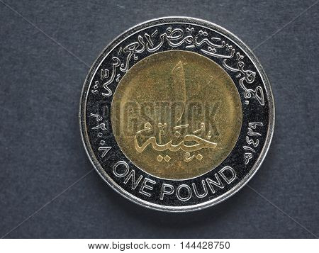 One Egyptian Pound (egp)