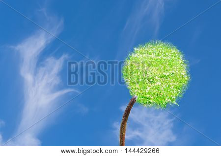 Photo composition dandelions meadow against blue sky.