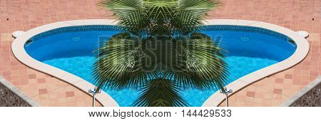Outdoor swimming pool whirlpool with blue tiles and palm