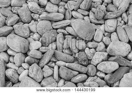 Black and White, Round sea stone, natural background and texture
