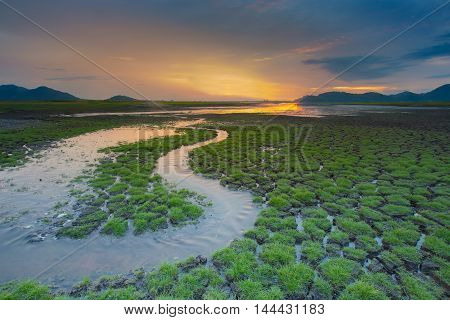 Natural land with small water way with sunset background