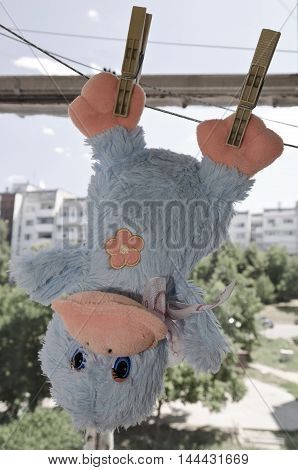 Funny toy duck hanging on line on the balcony