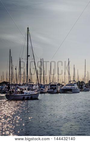 Point Roberts Washington State USA - June 28 2009 : crowded masts and sailing boats in Point Roberts marina at twilight with man aboard Washington State USA